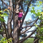 And this is the amazing climbing tree that Gianna climbs in the book! I couldn't resist climbing it, too.