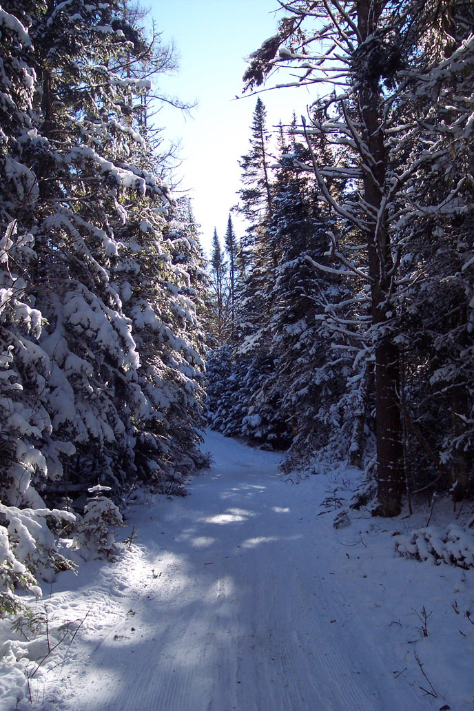 The Adirondack cross country skiing trail that inspired OVER AND UNDER THE SNOW.