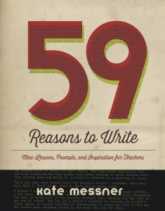 59 Reasons to Write cover
