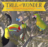 Tree of Wonder by Kate Messner