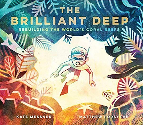 Cover of The Brilliant Deep by Kate Messner